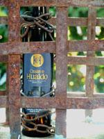 Casas de Hualdo Picual – A nemes vad. Füves-vadmentás, kesernyés-köményes jegyek, 100% picual, 0,2º savtartalom. Haladóknak. 0,5 l üveg 2.900.-