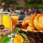 Apisland narancsvirágméz -- szelíd citrusos alapkarakter átütő citromos, narancsvirágos, jázminosan parfümös jegyekkel. 500 g 2.400.-
