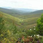 Serra da Malcata természetvédelmi terület. Forrás: visitportugal.com
