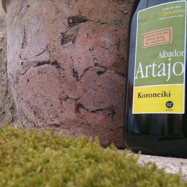 Artajo-Koroneiki-KICSI-02