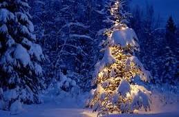 Feliz navidad, avagy ünnepi nyitva tartás az igaziolivánál