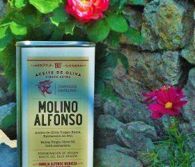 Molino Alfonso Empeltre 1 l. Akácos út.